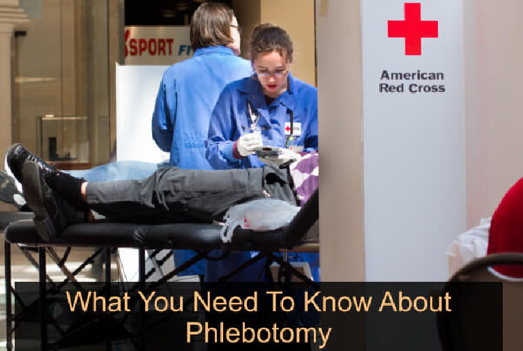 what-you-need-to-know-about-phlebotomy